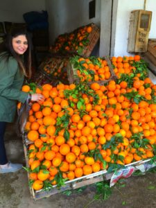 A Pinch of This - Morocco Travels - oranges